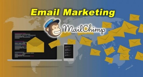 Curso Email Marketing com Mail Chimp